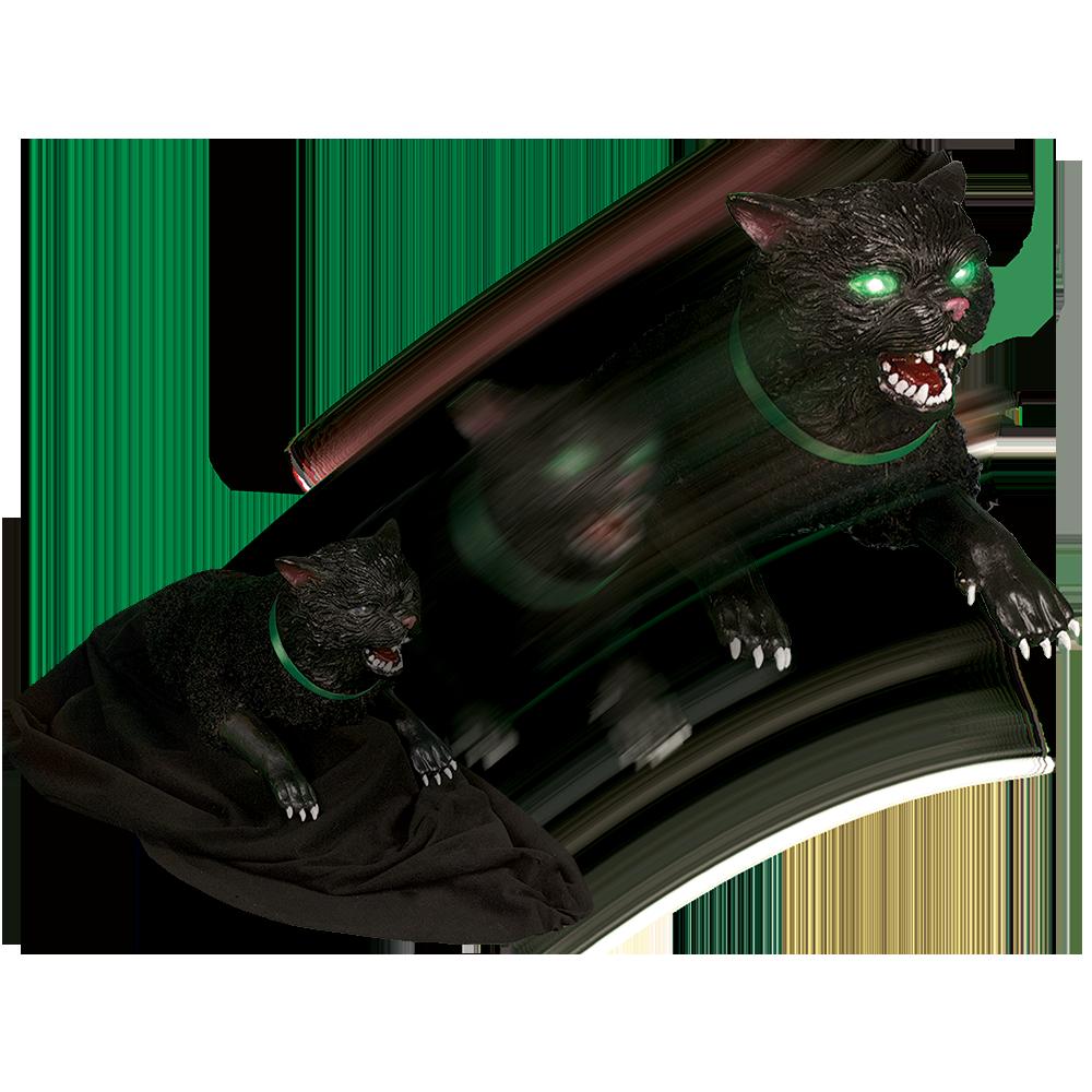 Cat Eyes Tabletop